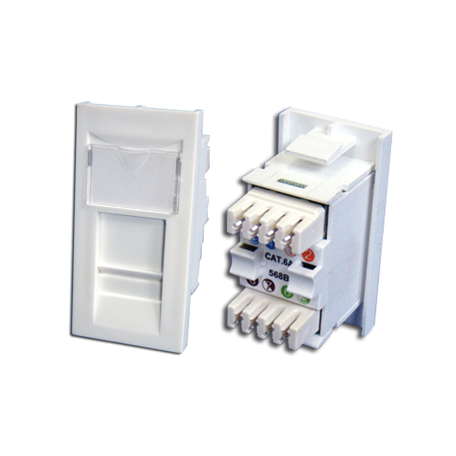 Cat 6 UTP Module Plus showing front and rear